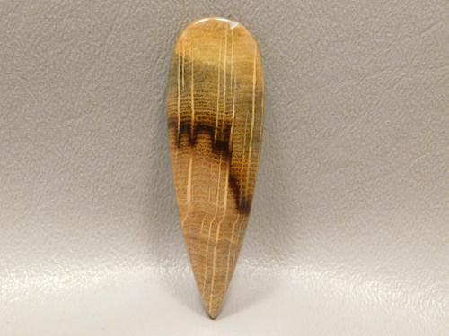 Petrified Golden Oak Wood Cabochon Teardrop Jewelry  Stone #8