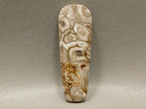 Petrified Palm Wood Freeform Cabochon Jewelry Stone Indonesia #1