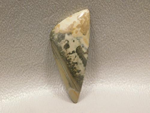 Cotham Marble Fossil Stromatolite Triangle Stone Cabochon #15