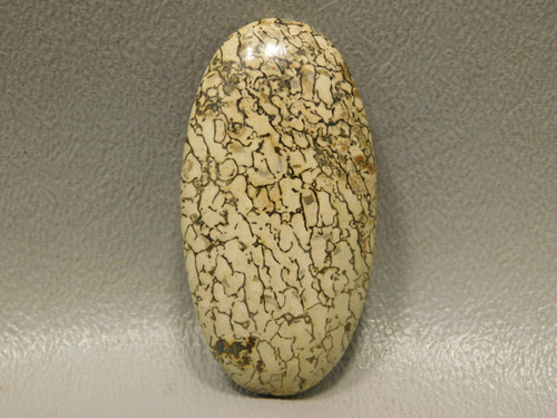 Dinosaur Bone Utah Fossil Yellow Loose Stone Cabochon #6