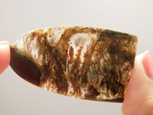 Oregon Priday Plume Agate Freeform Cabochon #14