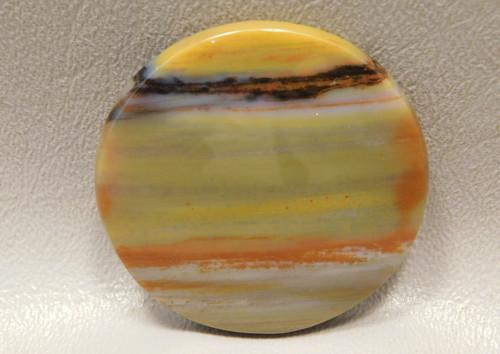 Arizona Petrified Wood Round 43 mm Cabochon Yellow Gemstone #6
