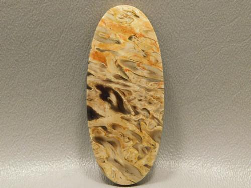 Fossilized Petrified Palm Wood Loose Stone Cabochon Indonesia #6