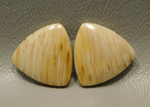 Petrified Palm Wood 18 mm Trillions Stones Matched Pairs Cabochons #17