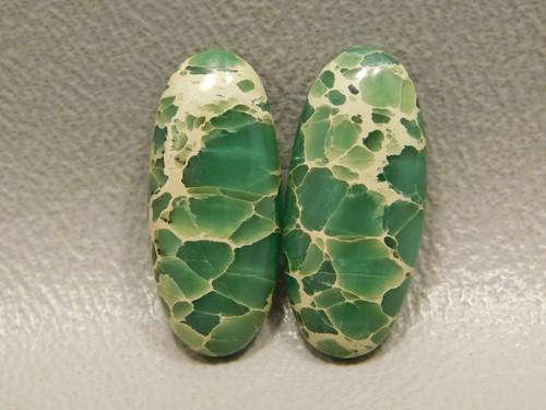 Green Webbed Variscite Designer Cabochon Pairs Stones #20