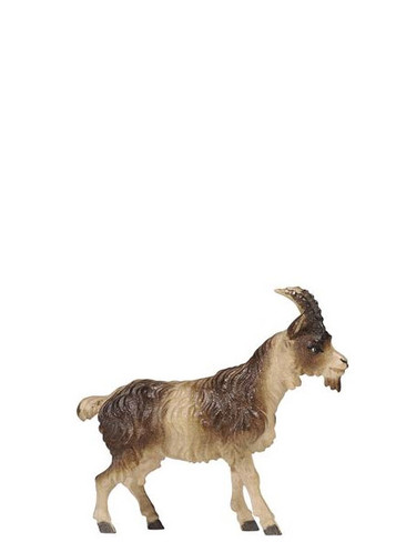 801198 Short Haired Goat Real Wood Painted Kostner Nativity from Pema in Italy