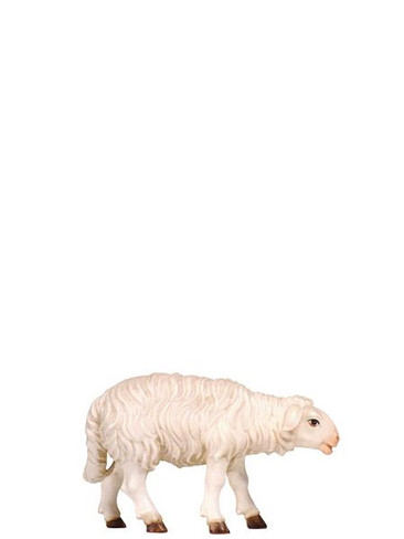 801260 Sheep Standing Real Wood Painted Kostner Nativity from Pema in Italy