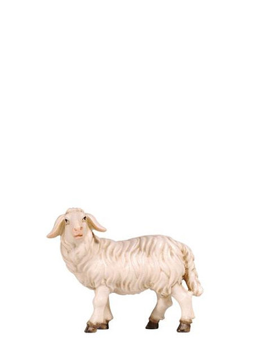 801261 Sheep Standing Real Wood Painted Kostner Nativity from Pema in Italy