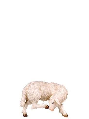 801266 Sheep Scratching Real Wood Painted Kostner Nativity from Pema in Italy