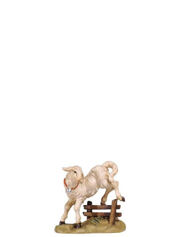 801284 Lamb Jumping Fence Real Wood Painted Kostner Nativity from Pema in Italy