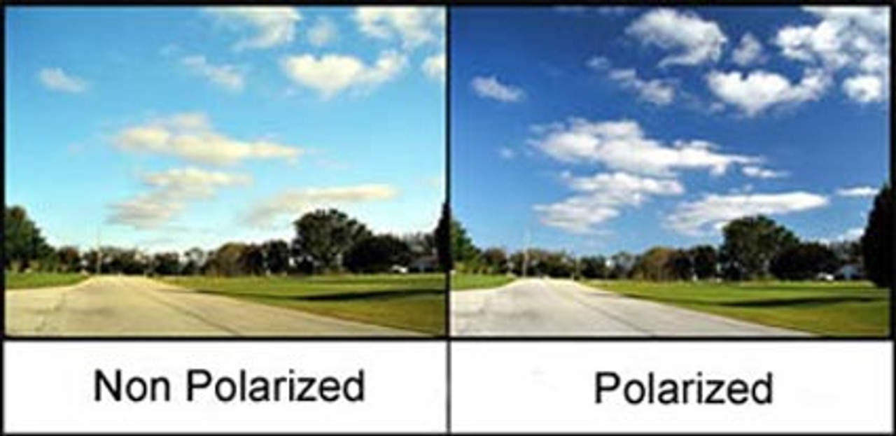 Polarized glass really do help you see better!