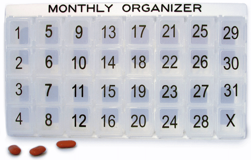 Monthly Organizer System Numbered 1 to 31