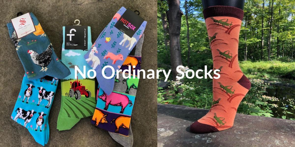 Fun Novelty Socks