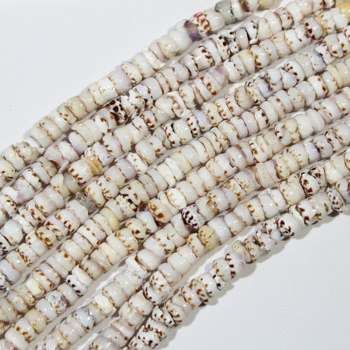 Tiger Puka Shell Beads | $4.00 Wholesale