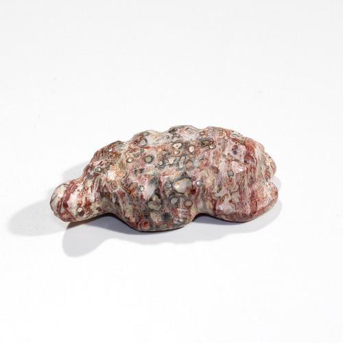 Turtle Fetish by Daisy Natewa | Leopard Skin Jasper