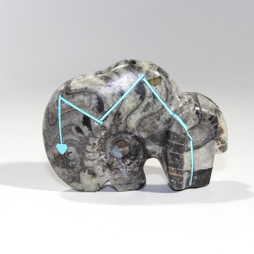Ram Fetish by Kenric Laiwakete | Ammonite-Goniatite