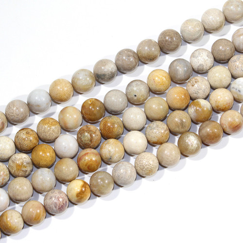 12mm Indonesian Fossil Coral Rounds