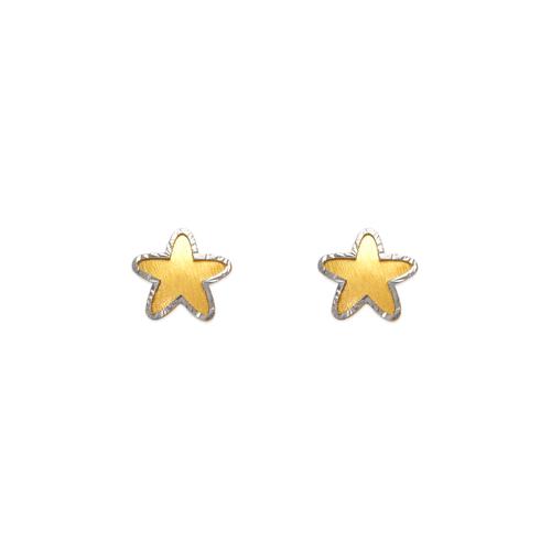 343-224 Diamond Cut Star Stud Earrings