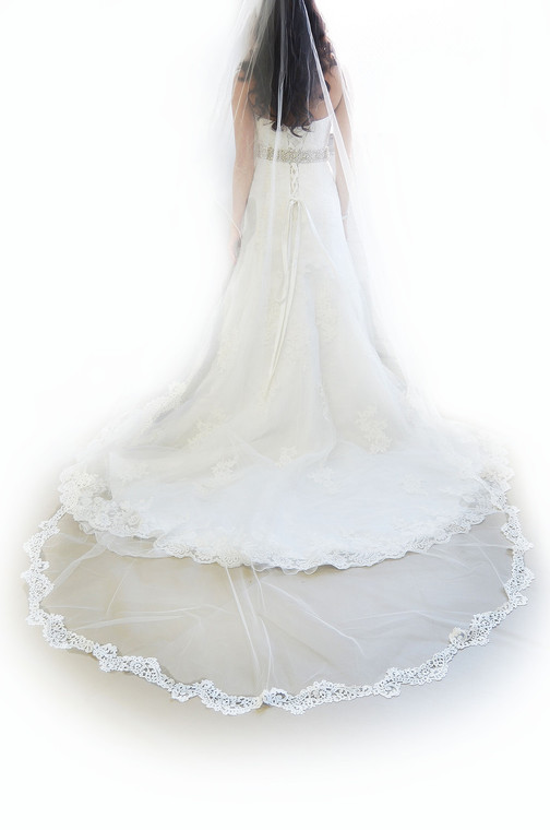 Venise Lace Cathedral Wedding Veil Ansonia Bridal 730L