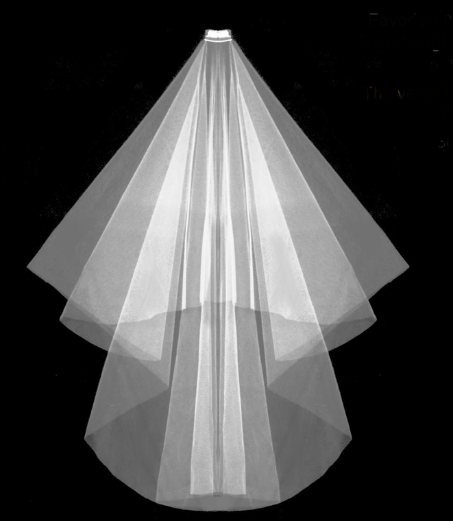 """Two Layer 50"""" Long Wedding Veil Flat on Comb"""