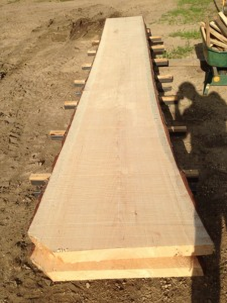 pine-slabs-waifu2x-photo-scale-tta-1-1.png
