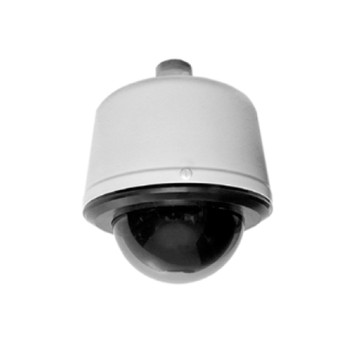 Pelco S6230-PGL0 2MP Indoor Dome PTZ IP Security Camera - 30x Optical Zoom, Smoked, Gray