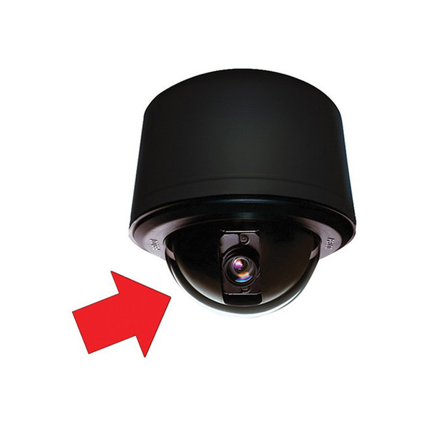 Pelco LD53PSB1 Stainless Steel Lower Dome Clear Pendant Black Trim Ring