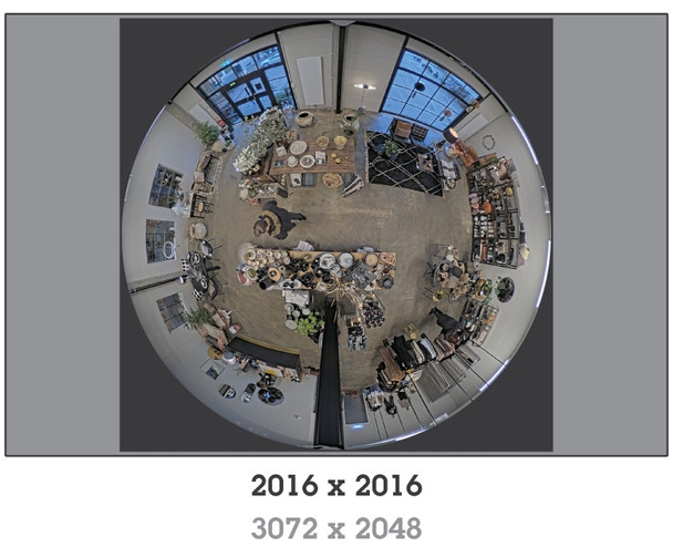 AXIS M3067-P 6MP H.265 Indoor Mini Dome IP Security Camera with 360-degree Panoramic View - 01731-001