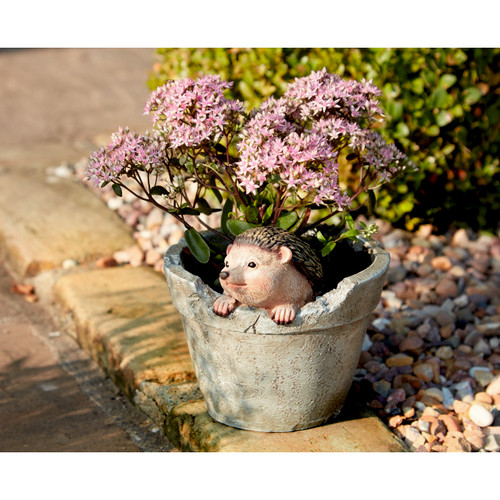 Baby Hedgehog Planter
