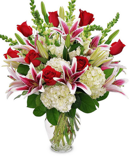 Lavish your special someone with a bouquet that will leave them breathless. Silky red 24-inch premium long-stemmed roses offer a message of passionate love and affection arranged amongst a bed of white hydrangea blooms elegantly accented with clusters of green Hypericum berries. Arriving in a superior clear glass pillow vase, this luxurious bouquet will leave a lasting impression.