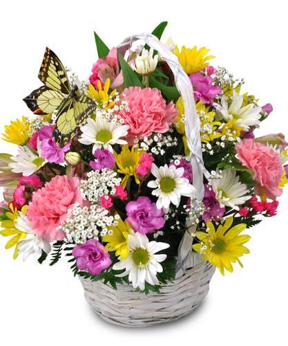 Spring Butterfly Flower Basket
