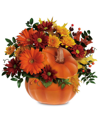 The Flowerloft's Harvest Pumpkin is packed with orange Gerberas, bronze cushion spray chrysanthemums, red daisy spray chrysanthemums, huckleberry, yellow oak leaves and more. Hand-delivered in a hand-painted ceramic pumpkin that can be used over and over again!