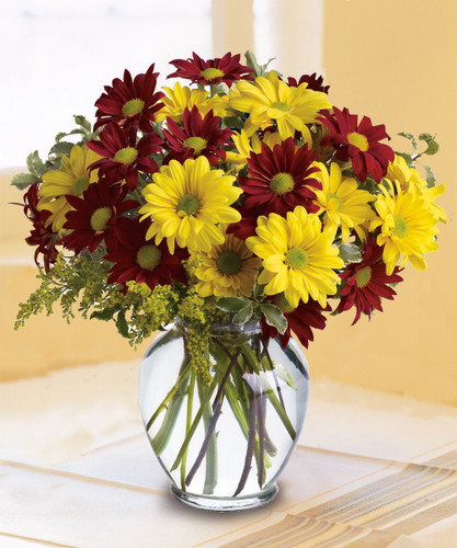 The Flowerloft's Fall for Daisies is a special seasonal autumn design of daisies and wheat that simply makes a lovely gift for any special occasion. Hand-delivered the same day in Lima, OH, or anywhere in the USA!