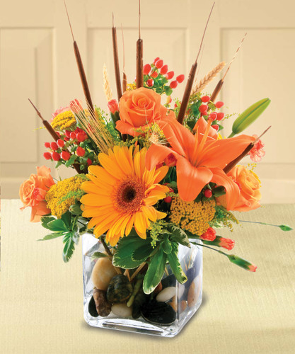 Splash your surroundings with the loveliest colors autumn has to offer with The Flowerloft's Splash of Autumn. This delightful bouquet features orange Gerberas, orange roses and orange lilies atop a bed of yarrow, holly, cattails and other fall favorites.