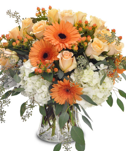 Heat up the cool fall nights with The Flowerloft's Autumn Kiss. This incredible design features blush roses and orange Gerberas floating above fluffy white hydrangea and accompanied with eucalyptus leaves and seasonal greenery in a glass vase.