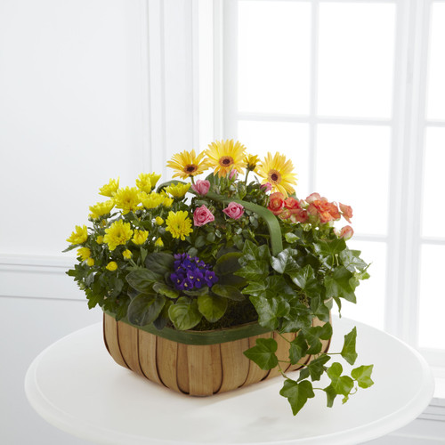 The FlowerLoft's Gentle Blossoms Basket