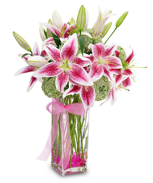 Lilies have long been a lovely way to warm anyone's heart. It is sure to please.