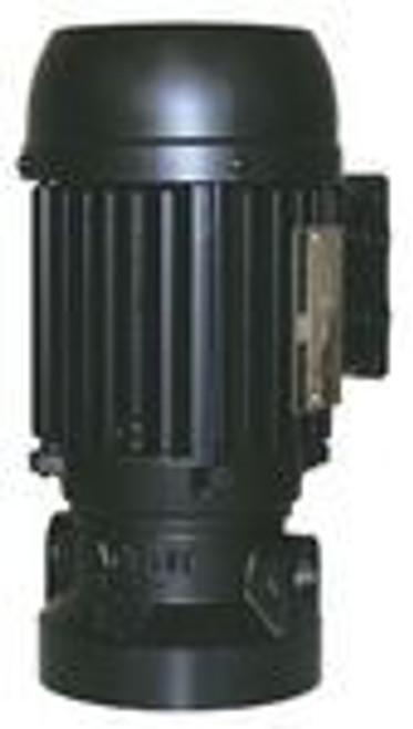 Lafert Motors AU63-575, COOLANT PUMP AU63 025HP PUMP 575V - 3600RPM