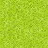 7755-69 Lime Green    Folio Basics