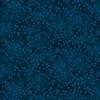 7755-74 Spruce || Folio Basics