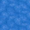 7755-75 Med Blue