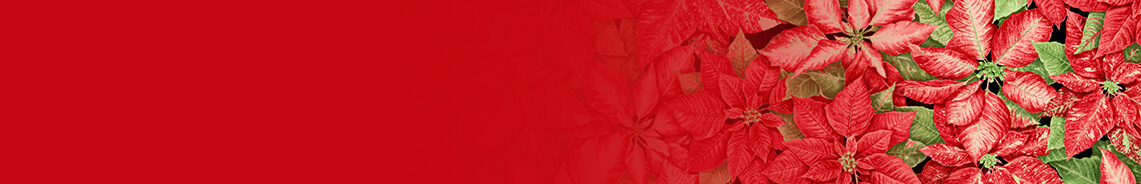 holiday-botanical-header.jpg