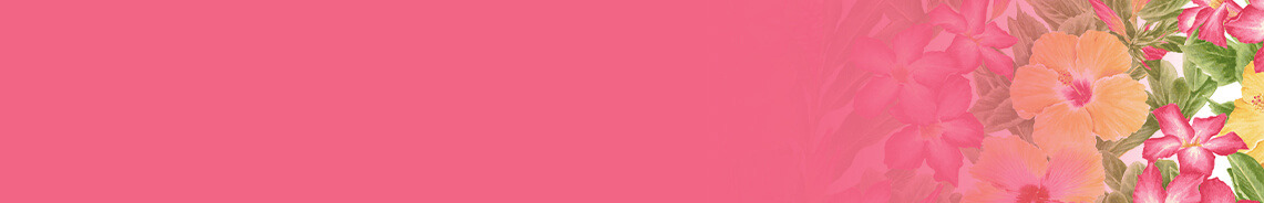 pink-paradise-header-2.jpg