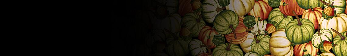 pumpkin-harvest-header.jpg