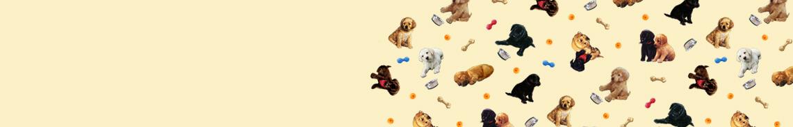 pups-in-the-garden-header.jpg