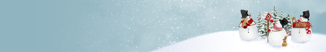 snow-days-header.jpg