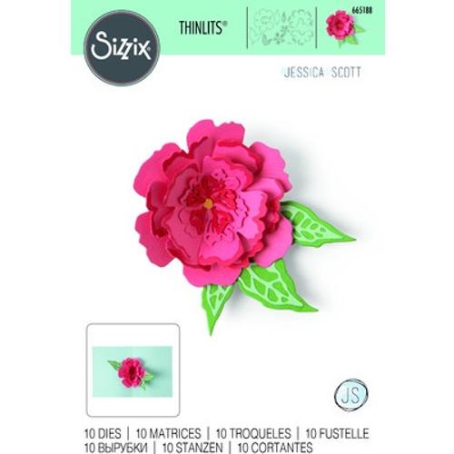 Sizzix: Thinlits Die Set, Pop-up Flower (10pk)