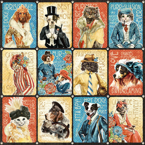 Graphic 45: 12x12 Patterned Paper, Well Groomed -Purr-fect