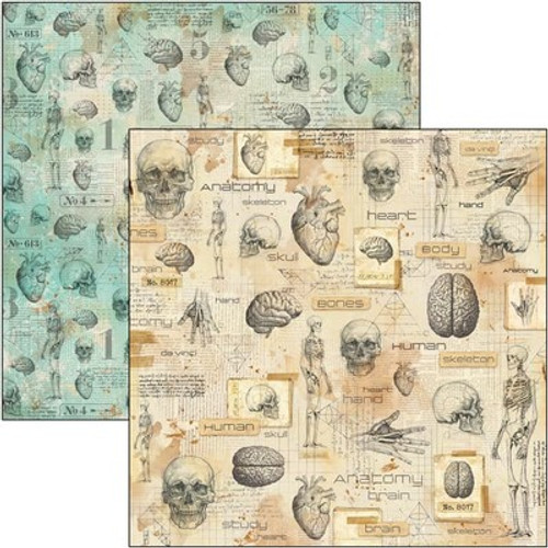 Ciao Bella: 12x12 Patterned Paper, Sign Of The Times - Human Anatomy