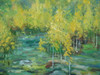 Beautiful medium sized painting on canvas, stretched but without frame, signed by Kingsley.  A wooded area full of yellow-leafed birch trees.